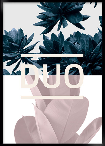 Poster - Duo