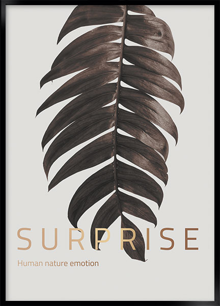 Poster - Surprise
