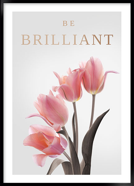 Poster - Be brilliant